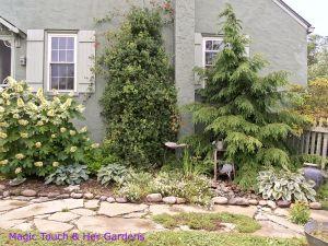 Mini Woodland Garden