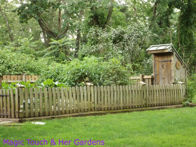 Veggie Garden. A Vegetable Patch ...