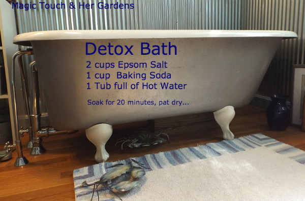 Detox Bath Magic Touch & Her Gardens