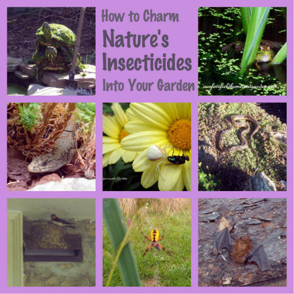 Nature's Insecticides