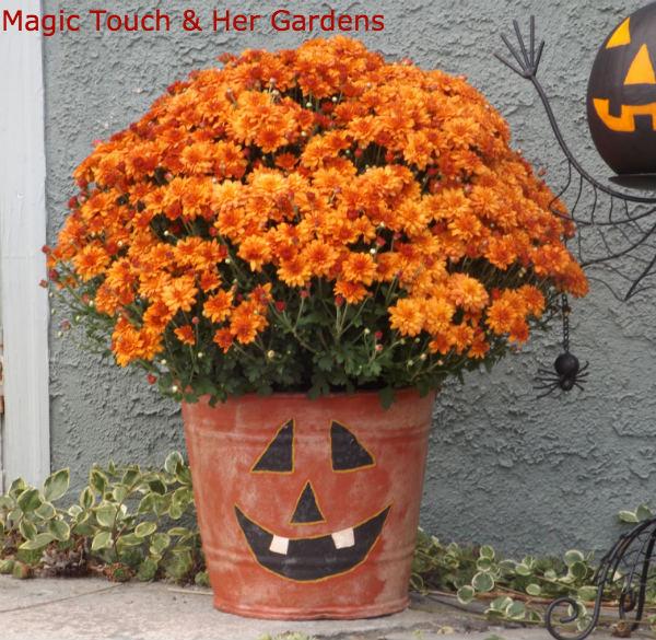 Pumpkin Pail