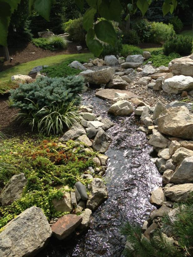 Devon's Garden