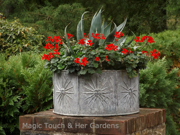Galvanized Container at Longwood Gardens