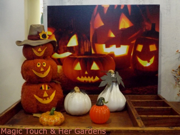 Magic Touch & Her Gardens, Jack o'Lanterns for All
