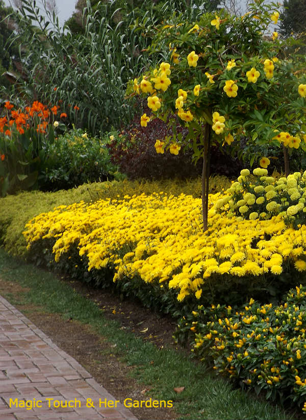 Yellow Brick Road at Longwood Gardens