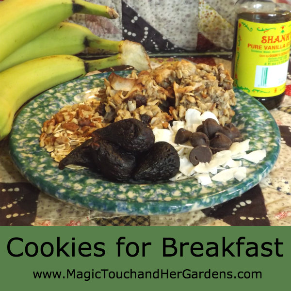 Cookies for Breakfast...An amazing recipe for cookies you can eat for Breakfast...Recipe found at http://wp.me/p3Nt7H-aA