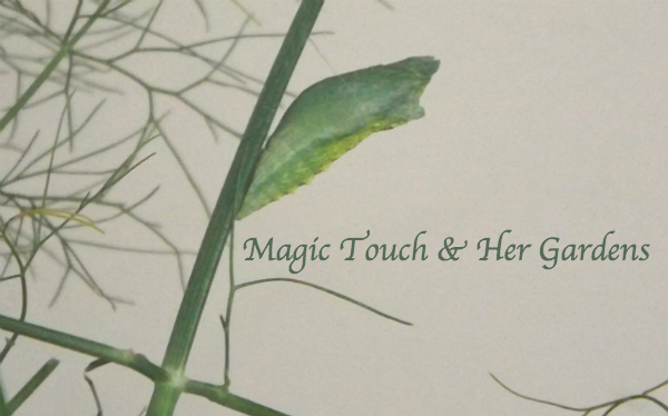 Green Chrysalis Magic Touch & Her Gardens