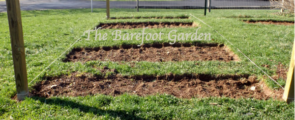 The Barefoot Garden, planning, plotting and execution. A Community Garden of Friends…