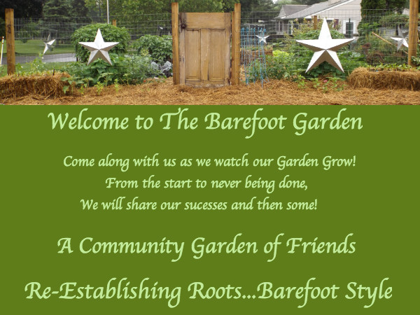 Watching The Barefoot Garden Grow
