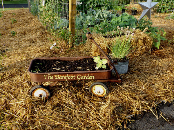 The Barefoot Garden ready to Grow