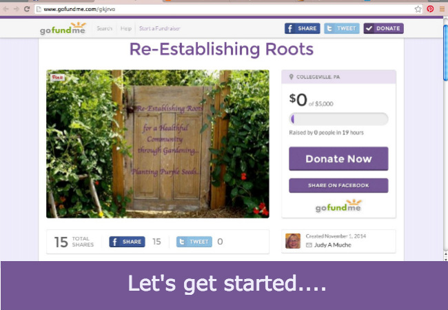 Let's get started Re-Establishing Roots