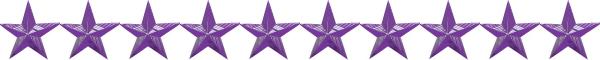 Purple Star Banner 600 X 60